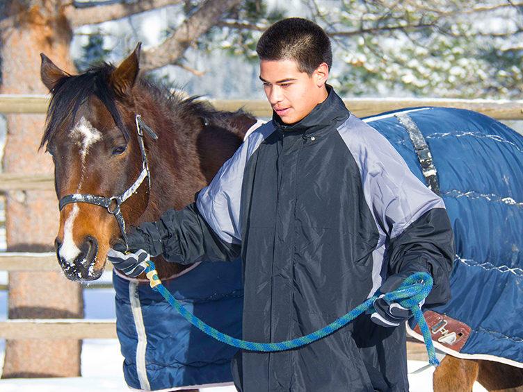 rmpr_horse
