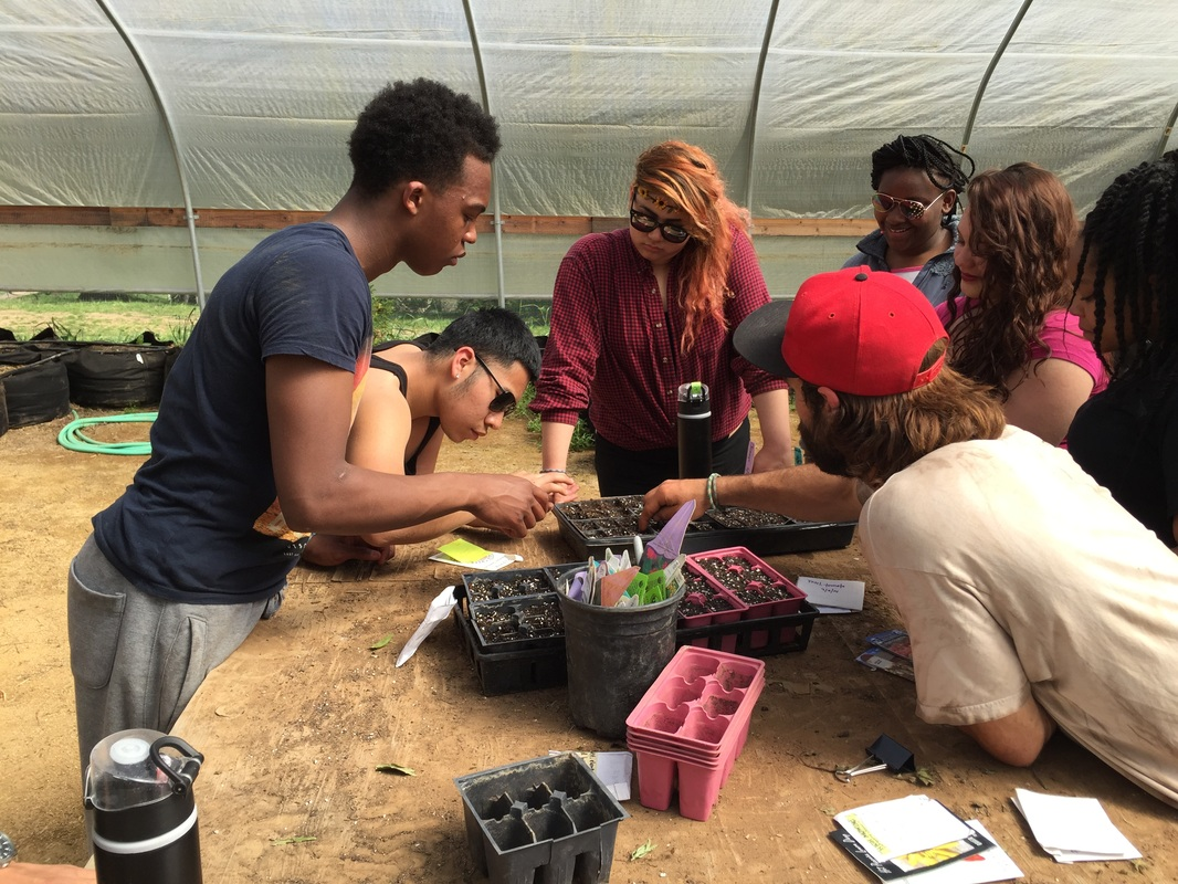 What Is Experiential Learning and Why Should You Know About It?